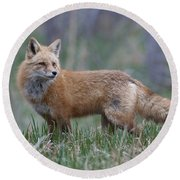 Watchful Round Beach Towel