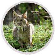 Watchful Mama Lynx Round Beach Towel