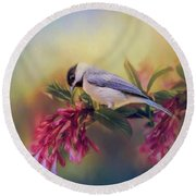 Watching Flowers Bloom Bird Art Round Beach Towel