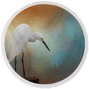 Round Beach Towel featuring the photograph Watching by Kim Hojnacki