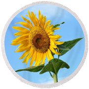 Watching Over Life Round Beach Towel by Angela J Wright