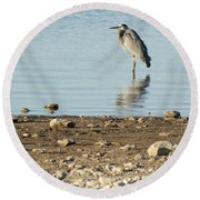 Early Morning Solitude Round Beach Towel