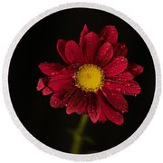 Round Beach Towel featuring the photograph Water Drops On A Flower by Jeff Swan