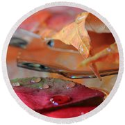 Water Drops On Autumn Leaves Round Beach Towel