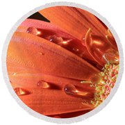 Water Drops On Colorful Flower Petals Round Beach Towel