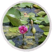 Water Lilies At Giverny - 3 Round Beach Towel