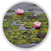 Water Lilies Round Beach Towel by Shirley Mitchell
