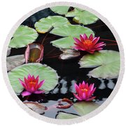 Water Lillies In Longwood Gardens Chester County Pa Round Beach Towel