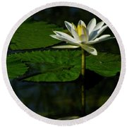 Round Beach Towel featuring the photograph Water Lily 1 by Buddy Scott
