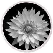 Round Beach Towel featuring the photograph Water Lily 1 by Richard Ortolano