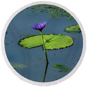 Round Beach Towel featuring the photograph Water Lily 2 by Buddy Scott