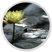 Water Lily And Silver Leaves Round Beach Towel