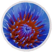 Water Lily Center Round Beach Towel