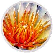 Water Lily Flower Round Beach Towel