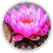 Water Lily In The Rain Round Beach Towel