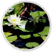 Round Beach Towel featuring the photograph Water Lily by Meta Gatschenberger