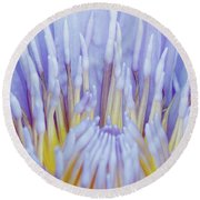 Water Lily Nature Fingers Round Beach Towel