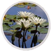 Water Lily Reflections Round Beach Towel