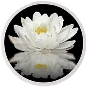 Water Lily Reflections On Black Round Beach Towel by Gill Billington