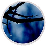Water On Branch Round Beach Towel