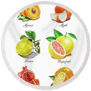 Watercolor Fruit Illustration Collection I Round Beach Towel