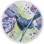 Watercolor - Smooth-billed Ani Round Beach Towel
