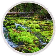 Round Beach Towel featuring the photograph Waterfall Over Mossy Rocks by Elena Elisseeva