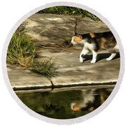 Round Beach Towel featuring the painting Waterfront Walking Kitten by Odon Czintos