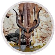 Waterhole Kudu Round Beach Towel by Ernie Echols