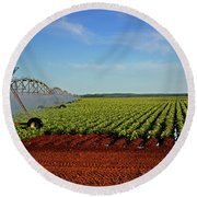 Round Beach Towel featuring the photograph Watering The Garden 002 by George Bostian