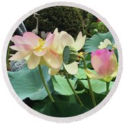Waterlillies Round Beach Towel