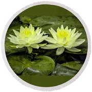 Waterlily Duet Round Beach Towel