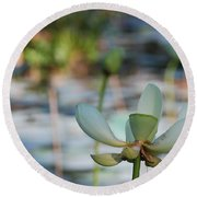Waterlily Wash Horizontal Round Beach Towel