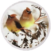 Waxwing Refuge  Round Beach Towel