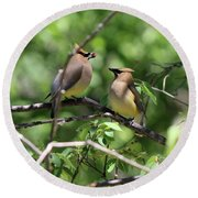 Waxwing Socialism Round Beach Towel