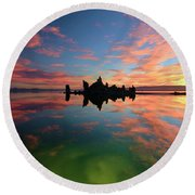 Round Beach Towel featuring the photograph We Are Not Alone by Sean Sarsfield