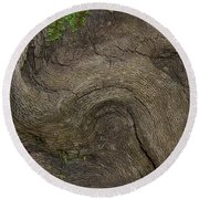 Round Beach Towel featuring the photograph Weathered Tree Root by Mike Eingle