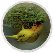 Weaver Bird Building A Nest Round Beach Towel
