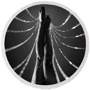 Web Of Desire Round Beach Towel