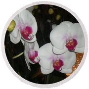 Wedding Orchids Round Beach Towel by Kim Prowse