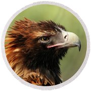 Wedge-tailed Eagle Round Beach Towel
