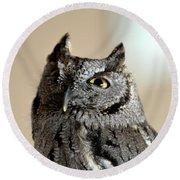 Wee Western Screech Owl Round Beach Towel