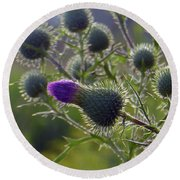 Weed Flower 1 0f 5 Round Beach Towel