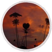 Weeds In The Sunrise Round Beach Towel