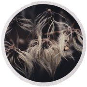 Round Beach Towel featuring the photograph Weeping Dandelions by Shane Holsclaw