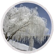 Weeping Willow In Infrared Round Beach Towel