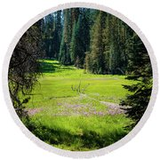 Round Beach Towel featuring the photograph Welcom To Life- by JD Mims