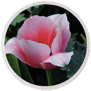 Round Beach Towel featuring the photograph Welcome Tulip by Penny Lisowski