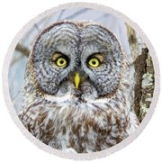 Well Hello - Great Gray Owl Round Beach Towel
