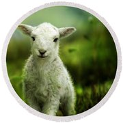 Welsh Lamb Round Beach Towel